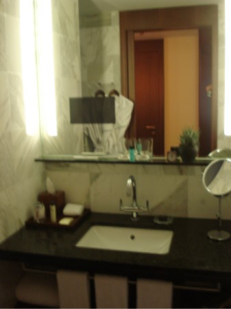 Park Hyatt Zurich Park Twin Bathroom Vanity