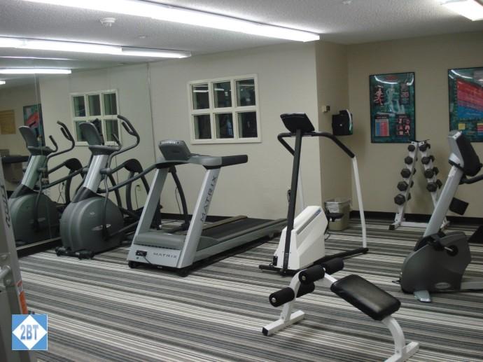 Gym - Cardio Area