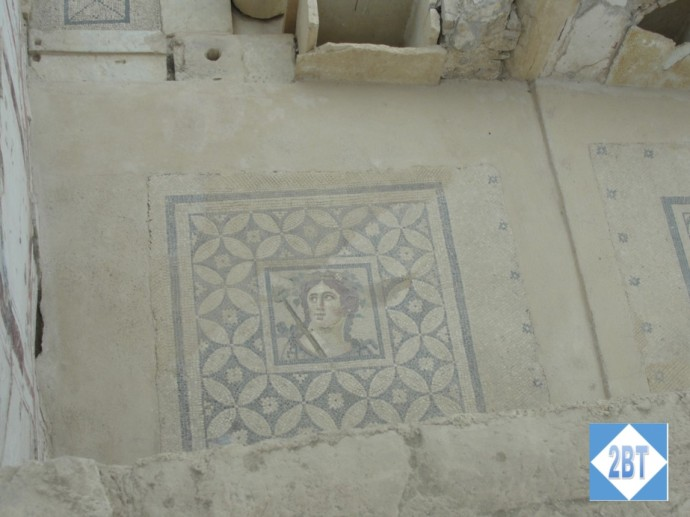 Mosaic on the floor of one of the Terrace Houses