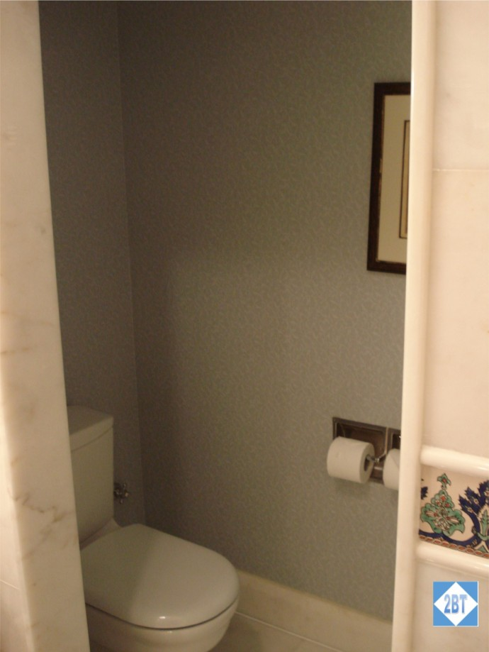 RC Toilet