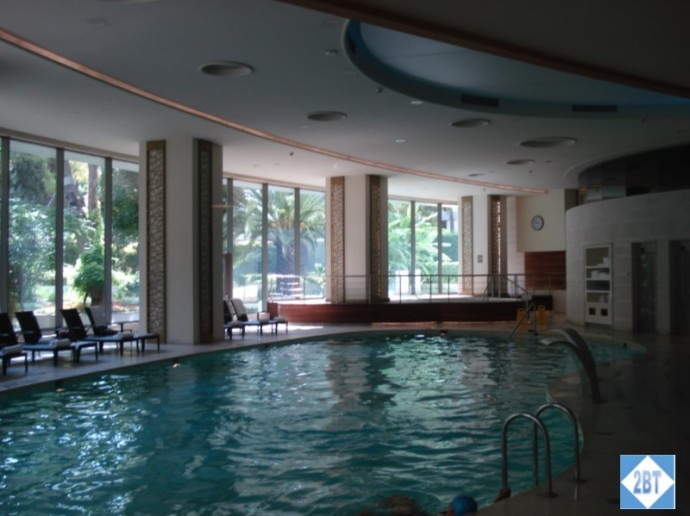 Swissotel Indoor Pool