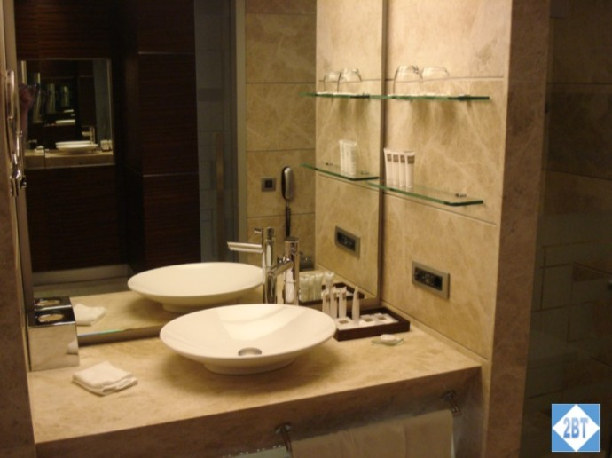 Swissotel Sink and Counter