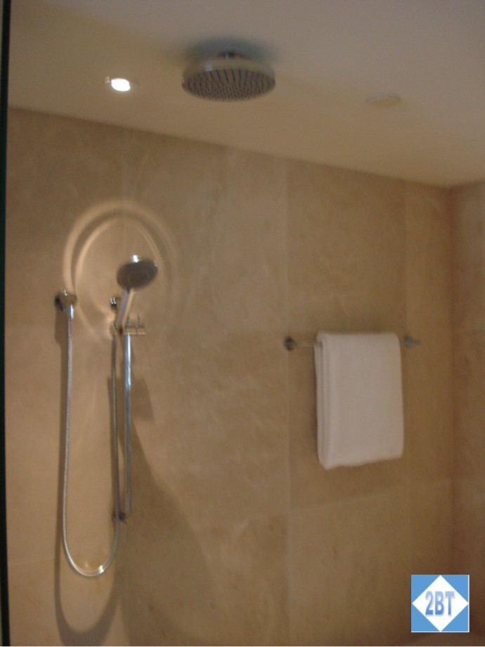 The shower is beside the tub and has both the rainfall showerhead and a hand-held nozzle.