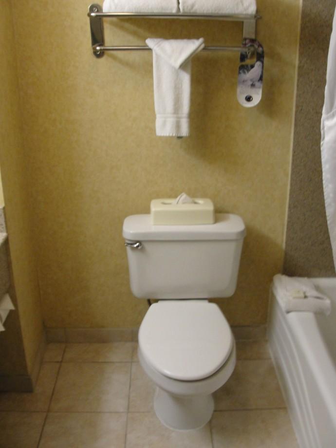 hi-vail-toilet