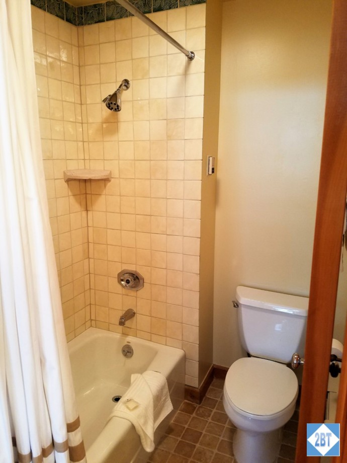 Shower/tub combo in the second bath