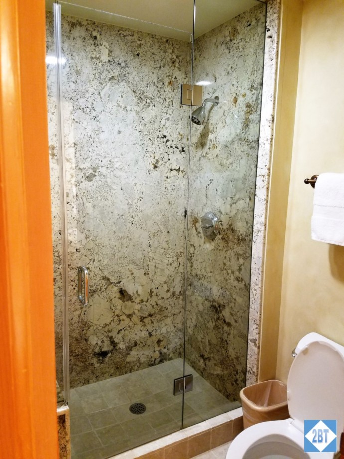 Shower in the master bath