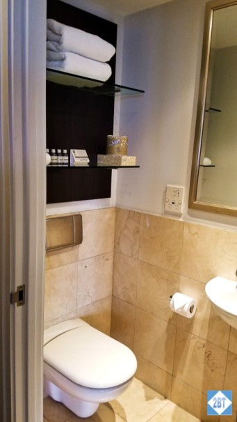Second bath toilet and shelves