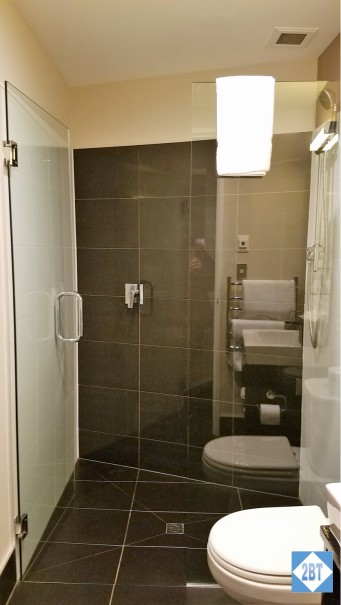 Shower in Hall Bath