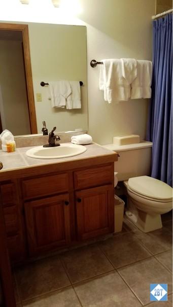 Hall Bath Sink
